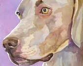 Weimaraner Art Print of Original Watercolor Painting - 8x10