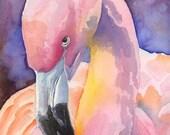 Flamingo Art Print of Original Watercolor Painting 11x14