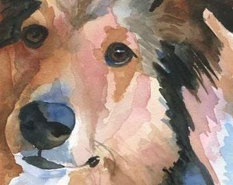 Shetland Sheepdog Art Print of Original Watercolor Painting - 8x10