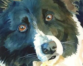 Border Collie Art Print of Original Watercolor Painting - 8x10 Dog Art