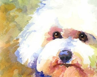 Bichon Frise Art Print of Original Watercolor Painting - 11x14 Dog Art