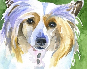 Chinese Crested Art Print of Original Watercolor Painting 8x10