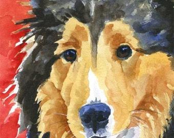 Shetland Sheepdog Sheltie Art Print of Original Watercolor Painting 11x14