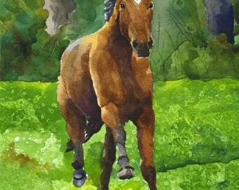 Bay Horse Running Art Print of Original Watercolor Painting 8x10