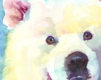 Samoyed Art Print of Original Watercolor Painting - 11x14 Dog Art