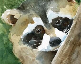 Raccoon Art Print of Original Watercolor Painting 11x14