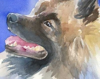 Keeshond Art Print of Original Watercolor Painting - 8x10