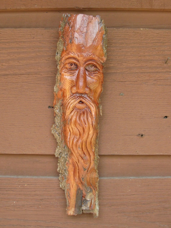 Reserved for Laura K. NEW Merlin in the Woods cottonwood bark carving