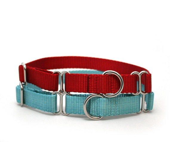 items similar to 34quot dog collar the swan buckle or