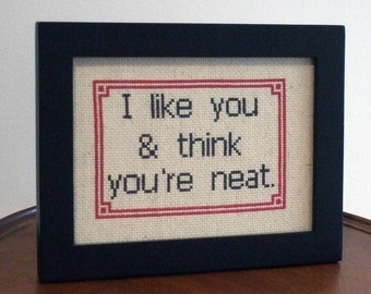 I like you and think you're neat - Framed Cross Stitch