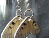 Little Butterflies-- Earrings