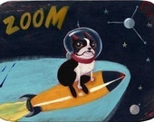 Boston terrier in space