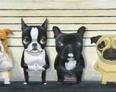 The Line Up - Boston Terrier dog art print - rubenacker
