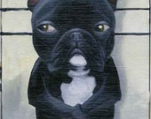 french bulldog  line up dog art magnet