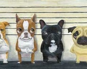 Brown/Red Boston Terrier - The Line Up Print