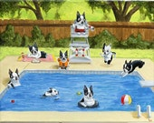 Boston Terrier 11 x 14  Pool Party art print