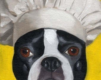 Boston Terrier 101 Hat Series Number 15 Dog Art PRINT