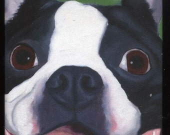 Boston Terrier Cute Dog Art Magnet
