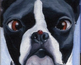 Boston Terrier with a Ladybug on His Nose Magnet