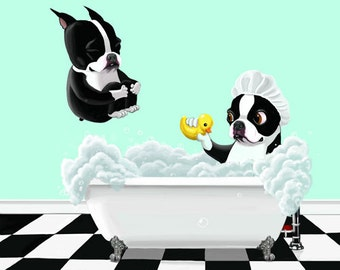 Boston terrier art, Bath Time - Boston Terrier Dog Art print