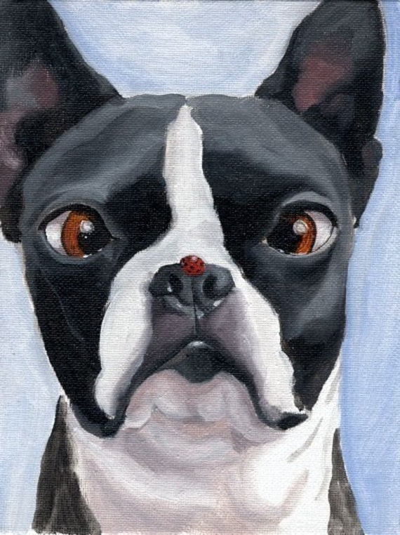 Boston Terrier and the Ladybug Print from oil painting