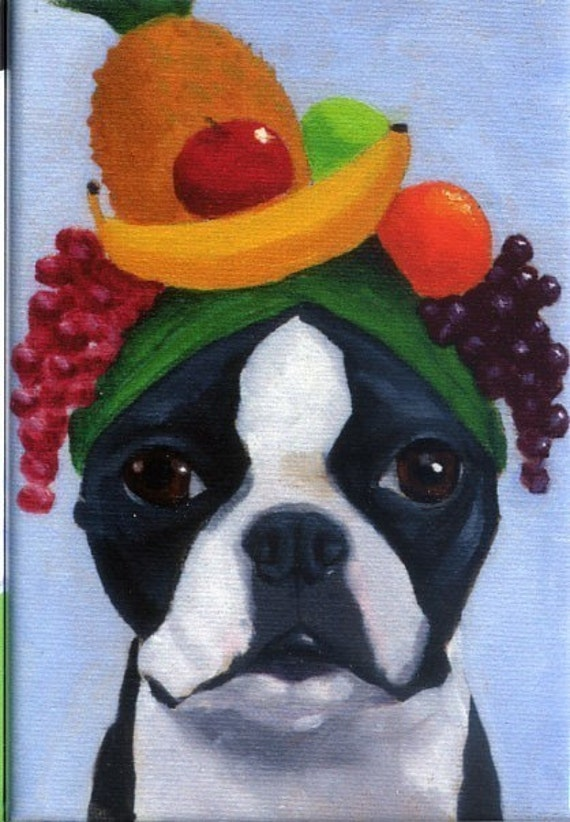 Boston terrier wearing fruit hat dog art magnet