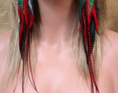 Reserved for AcidpodSuper Long Red and Black Peacock Feather Earrings - FREE SHIPPING- US, Canada and Australia