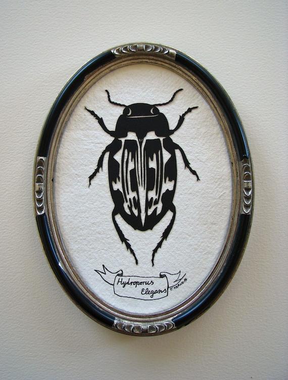 Insect Specimen No.3 - Original papercut Art, Framed
