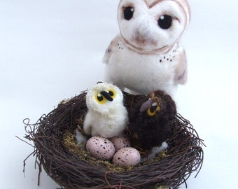 Needle Felted Barn Owl Life Sized Collectible Art Doll Owl, Felt Bird