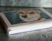 Greeting Cards- Mixed Set of 6
