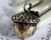 Handmade Silver and Yellow Brass Acorn Pendant