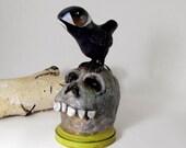 Art Sculpture - Paper Mache - Raven atop a Skull - Big Eyed Bird