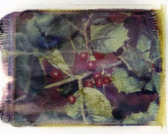 Polaroid transfer - Holly branch