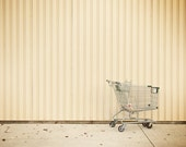 Shopping Cart - 3.75x3 Modern Fine Art Photographic Print Matted to 10x8