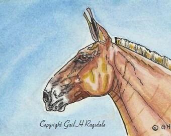 ACEO Original Watercolor & Ink Art Belgian Mule Horse Equine