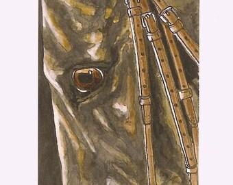 Saddlebred Morgan Arabian Horse Eye 2 Limited Edition Print Mini Art by Gail aceo