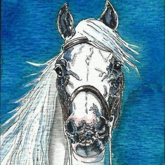 ACEO Andalusian Horse Head Original Watercolor & India Ink Art