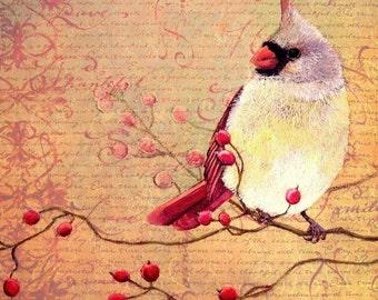 Art Print - Female Cardinal - Decorative - Thanksgiving - 8x8