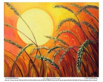 Sun-Ripe Harvest - 8 x 10 inch Art Print