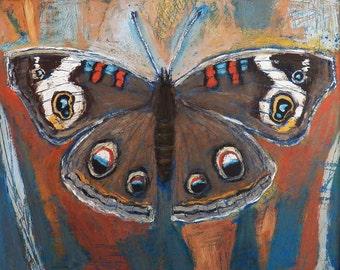 Original Art - Buckeye Butterfly - Arcylic & Pastel Artwork - collectible fine art