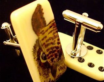 Brown Owl Cuff Links