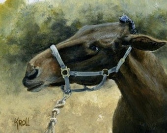 A Mule A Day, mule giving another a dirty look, original painting