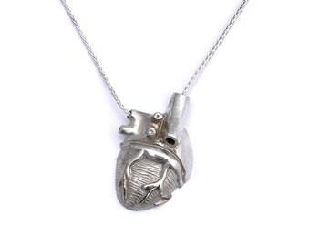 Silver Half Heart Dorsal View