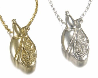 White or Yellow Bronze Anatomical Heart Necklace