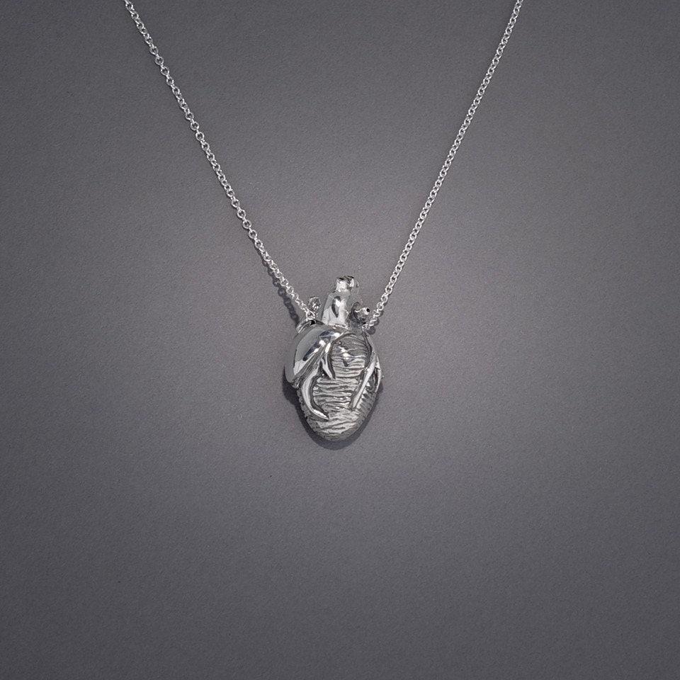 anatomically correct human heart necklace 24 inch chain