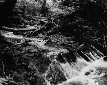 Creek With Falls