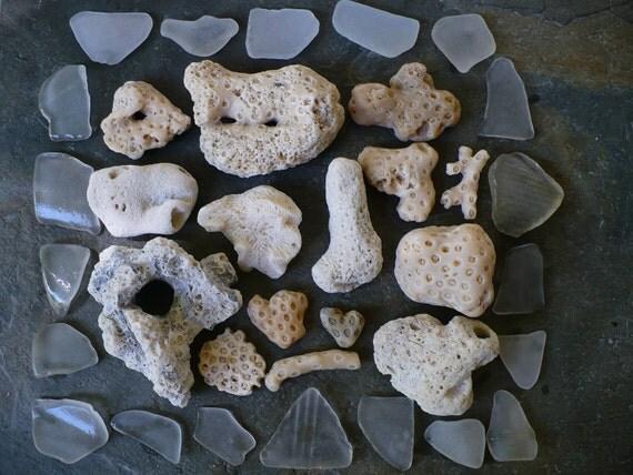 BEACH TREASURES...35 crafting supply pieces