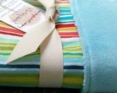 Bungalow Stripe Baby Blanket, backed with aqua minky (minkee)