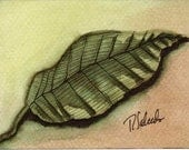 Giclee Art Print Green Etched Leaf by Rebecca Salcedo FFAW