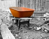 Whimsical Wheelbarrow Photograph - Free Shipping